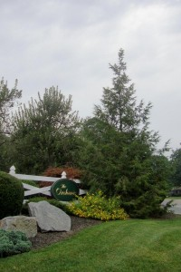 The Orchards - landscape - entrance area sign